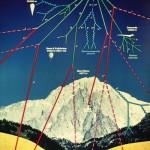 الميونات التي تنتج عن تفاعل الأشعة الكونية مع الغلاف الجوي تؤدي إلى تشوه الأجنة